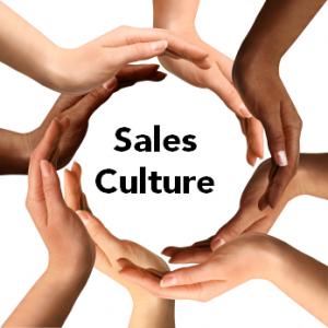 Text Book - Sales Culture