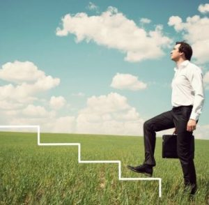 The Chief Sales Leader Framework - The Genesis