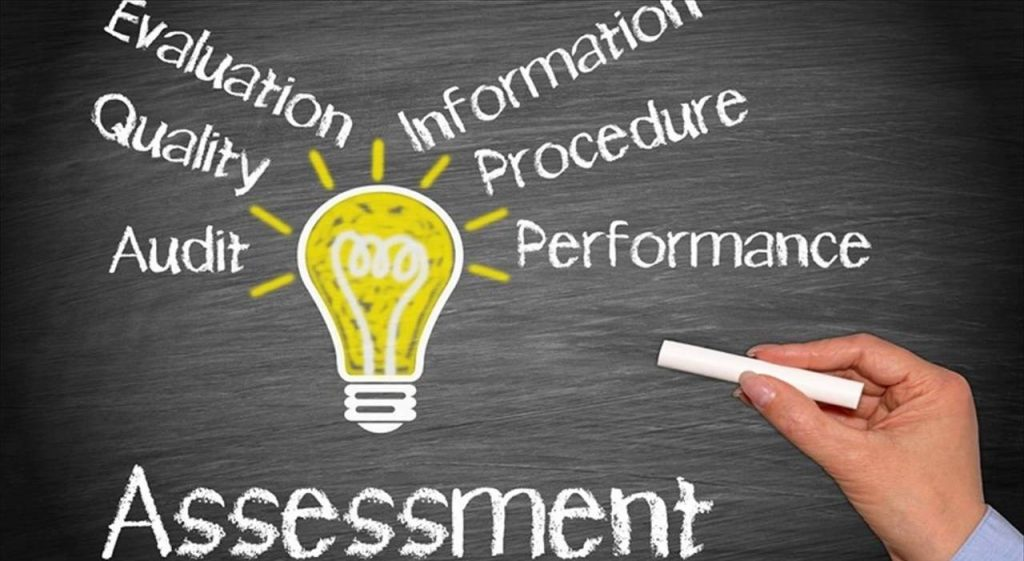 Chief Sales Leader Assessment Image
